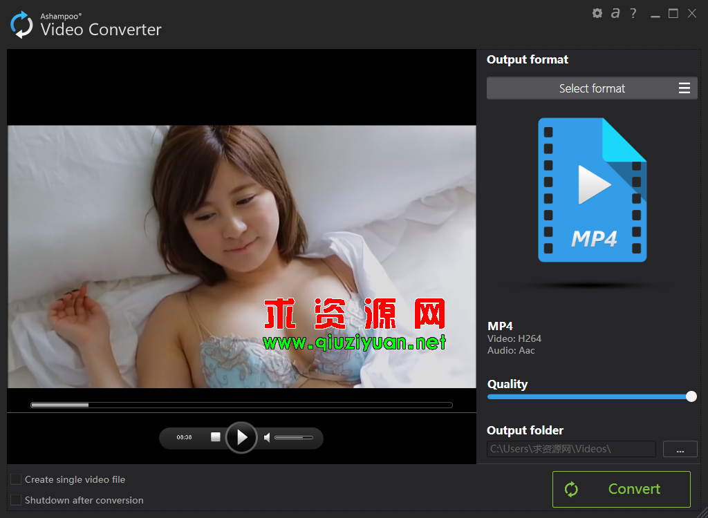 视频转换 Ashampoo Video Converter v1.0.2.1 便携版